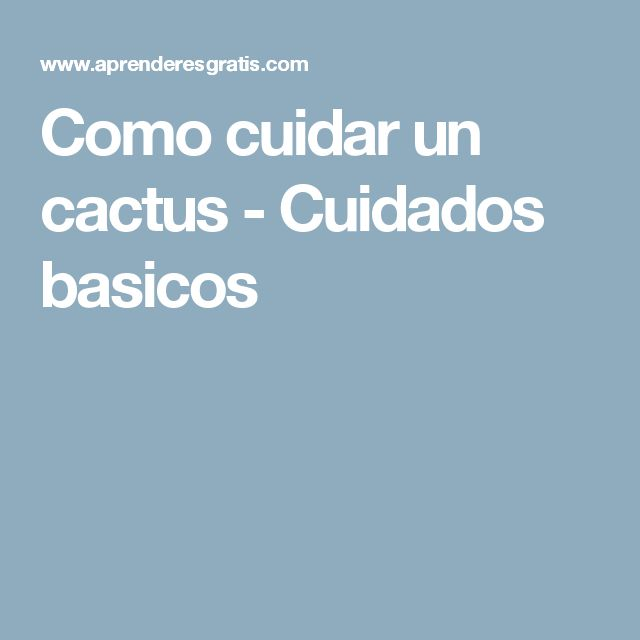 Las 25 mejores ideas sobre como cuidar cactus en pinterest - Como transplantar cactus ...