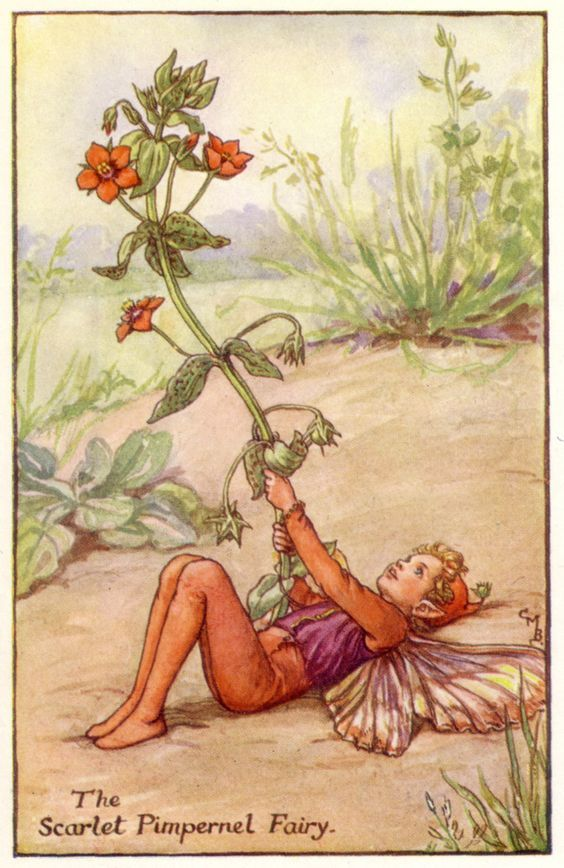 how to call fairies to you