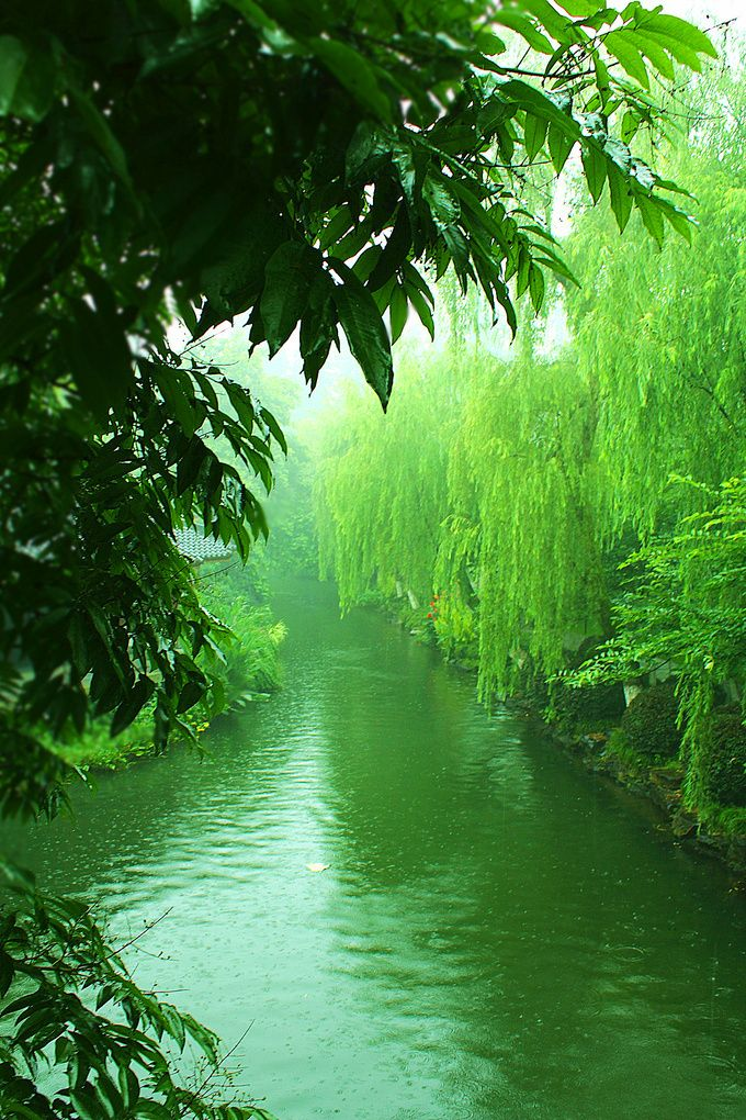 Peacefully Green River and Landscape