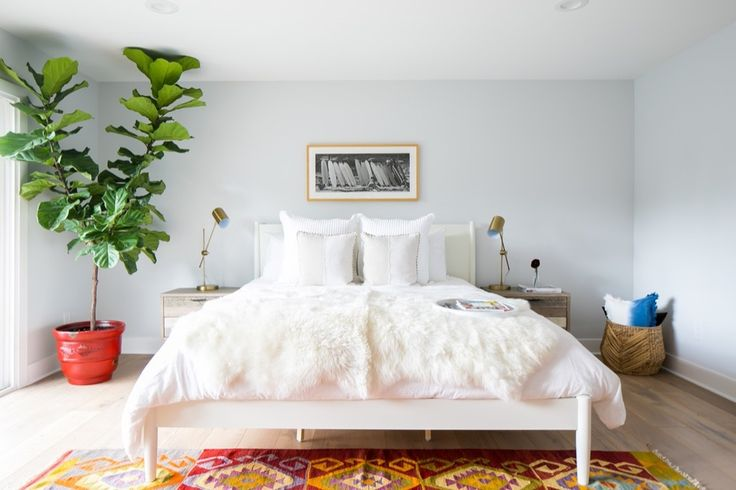 Bedroom Inspiration: large plant, white bedding and ethnic rug.