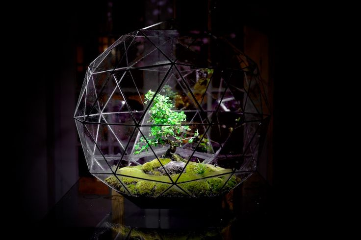 Pentakis Dodecahedron. Available to purchase from our online store.