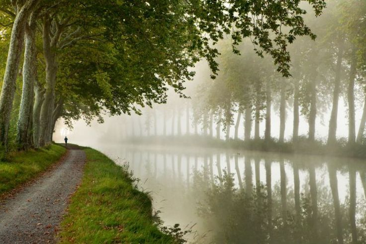 A jogger on the towpath of the Canal du Midi near Castelnaudary, Languedoc-Rousillon, France / David Noton