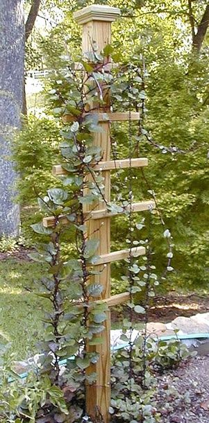 17 Best Images About Funky Garden Ideas On Pinterest 400 x 300