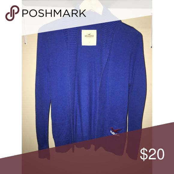 Royal Blue Hollister Cardigan Royal blue Hollister cardigan with collar. Slight slim fit on the arms. Worn only once. Hollister Sweaters Cardigans