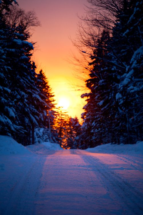 snowy road sun glow | by nate parker |...
