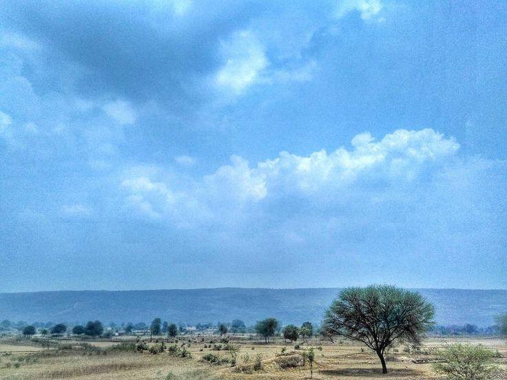 Minimal Monster  India  #minimalmonster #india #landscape #trees #savetrees #globalwarming #travel #photography