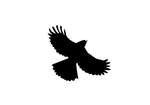 Free Flying Bird Silhouette Vector - SV Stock Blog
