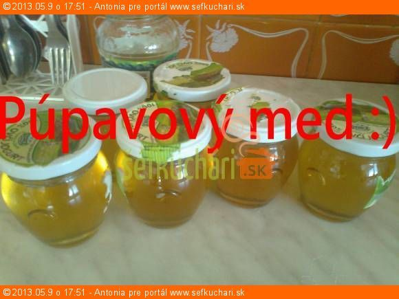 Puvavovy med