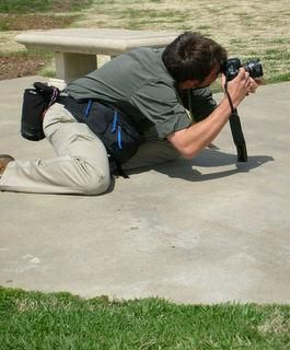 Photography contests for amatures