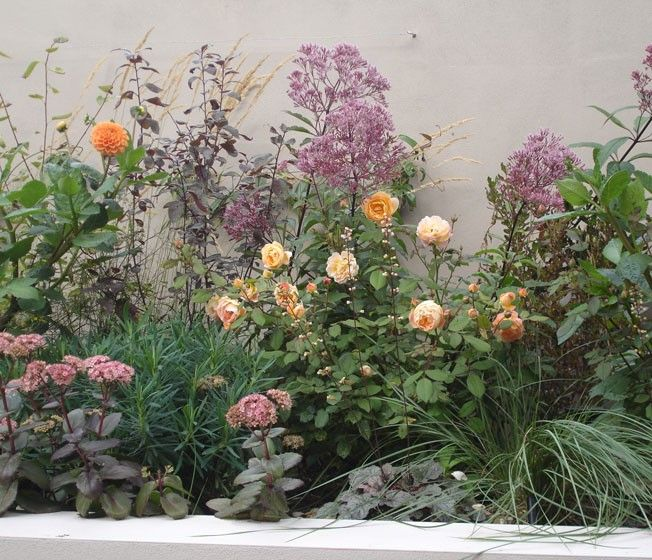 1960 39 s london townhouse raised beds filled with dahlia for Garden design 1960s