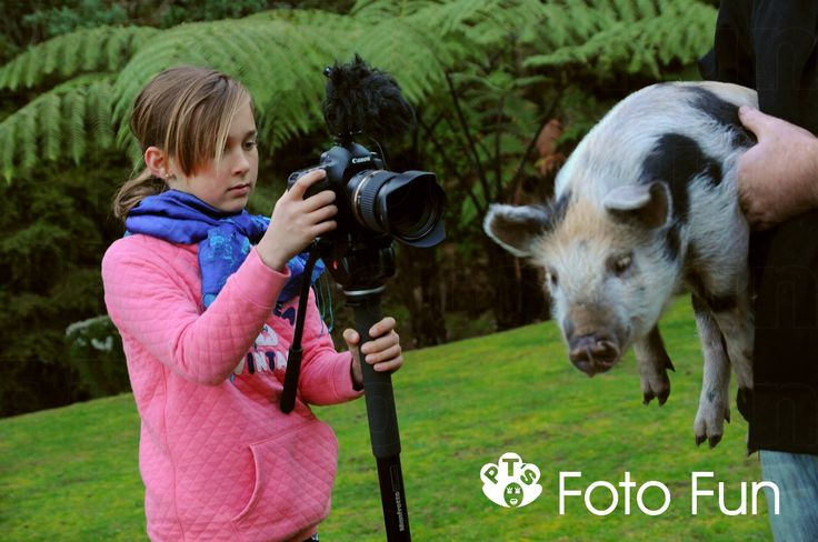 "Oscar the pig, filming of Short film for Waipa film challenge competition, ""A twist in the tale"""