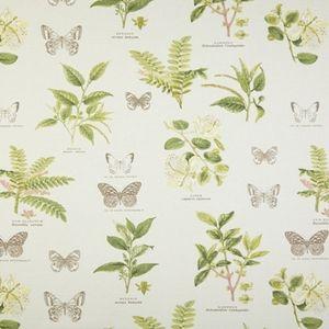 Botany Acacia 100% cotton 137cm 61cm Dual Purpose