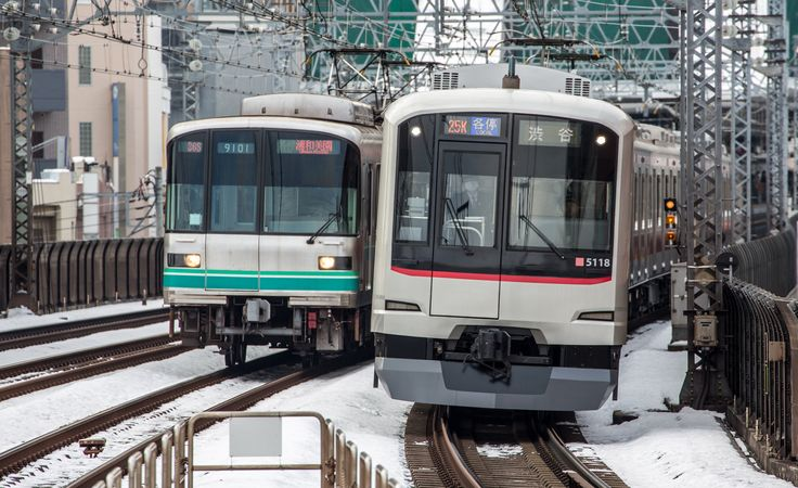 series 5050 (r) Toyoko-Line and series 9000 (l) Tokyo Metro on the Tokyu-Meguro-Line (Photo by Showa Express)