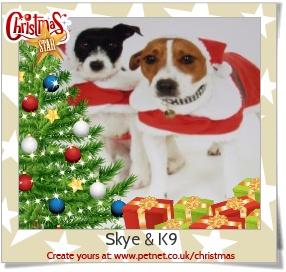 Skye & K9