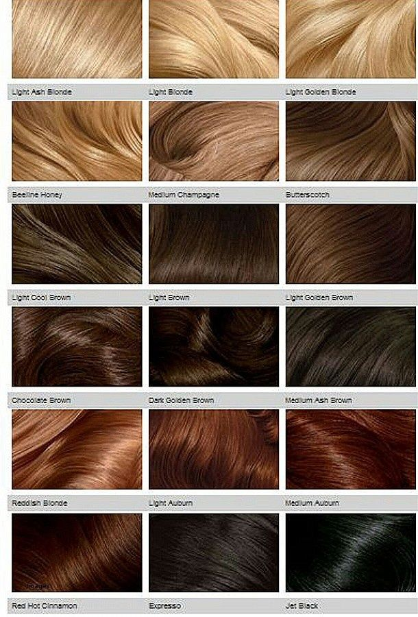 16 Important Facts That You Should Know About Strawberry Blonde Hair Color Chart Hair Color Chart Blonde Hair Shades Honey Hair Color Blonde Color Chart