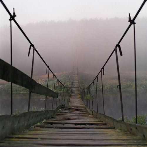 adventure~: The Roads, Favorite Places, Beautiful, Planks Bridges, Forests Anton Novoselov, The Bridges, Russian Bridges, Federer Photos, Russian Federer