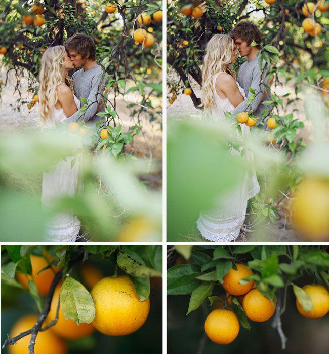 Orange Grove Engagement Photos | Green Wedding Shoes Wedding Blog | Wedding Trends for Stylish + Creative Brides