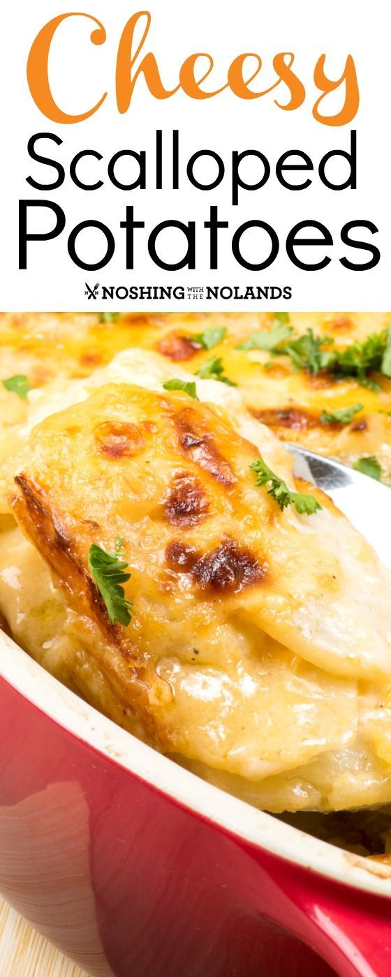Cheesy Scalloped Potatoes by Noshing With The Nolands is a classic comforting side dish that has a rich, creamy sauce and loads of cheese!