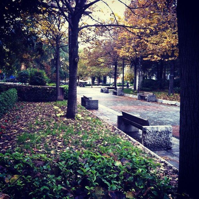 """""""Βροχερή καλησπέρα! #βροχερήμέρα #πλατείαταχυδρομείου #πάρκο #Λάρισα #ελλάδα #φύση #πράσινο #δέντρα"""""""