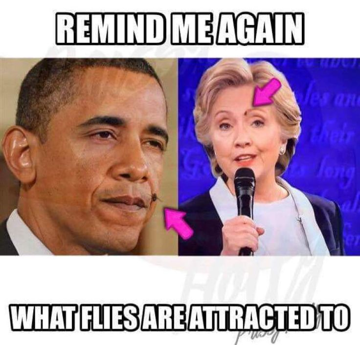 fly on hillarys face | Second Presidential Debate 2016. Donald Trump vs Hillary Clinton! FLY ...