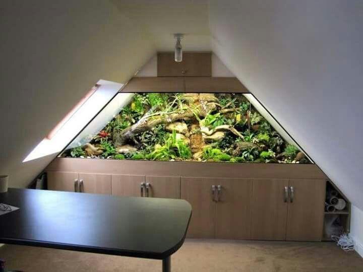 Built in reptile enclosure