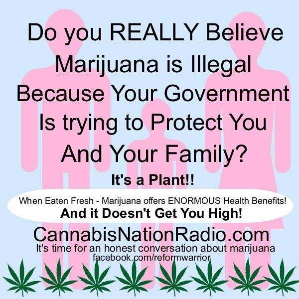 should marijuana remain an illegal substance 5 reasons marijuana should remain illegal  when people are addicted to  cannabis, cocaine and alcohol the drug they have the most.