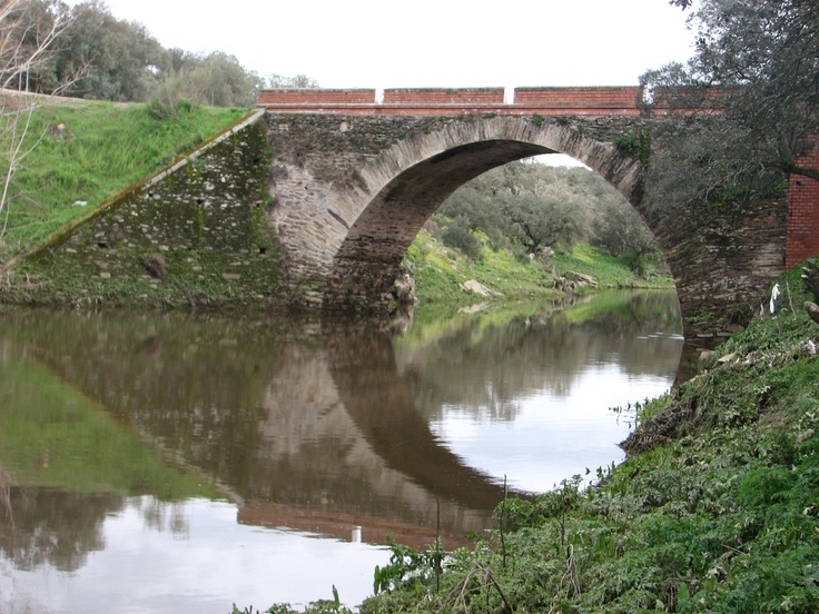 Desde Casar de Cáceres sale una pequeña carretera hacia Santa Marta de Magasca y los pueblos de los 4 lugares. Cuando cruza por este puente el Río Guadiloba no es nada difícil que levantemos un bando de perdices y en el río seguramente veremos algunas anátidas.