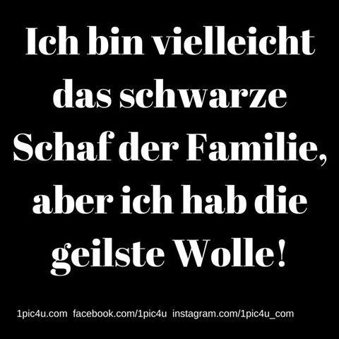 #1pic4u #funnypictures #lustigesprüche #haha #witz #lustigesbild #derlacher