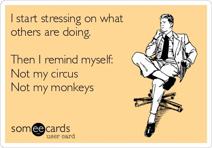 I start stressing on what others are doing. Then I remind myself: Not my circus Not my monkeys | Encouragement Ecard