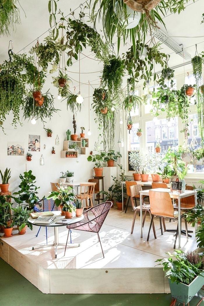 Wie Man Pflanzen Von Der Decke Hangt Today Pin Room With Plants Plant Decor Indoor Dining Room Small