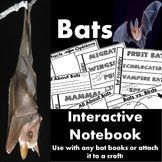 Bats Interactive Science Notebook Organizers
