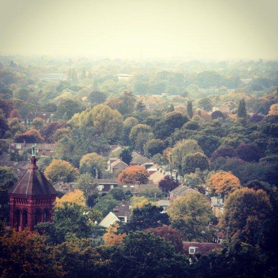 View from Pembroke Lodge, Richmond, London