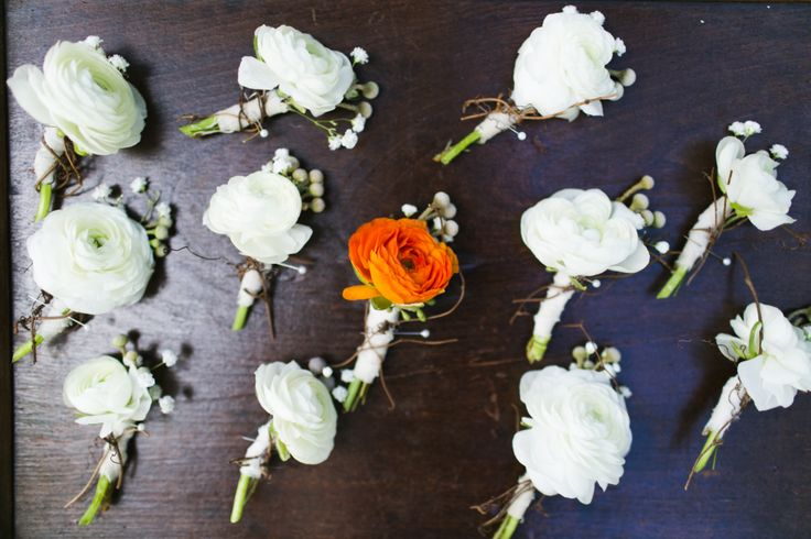 boutonnieres of ranunculus, silver brunia and baby's breath are wrapped in satin ribbon grapevine.