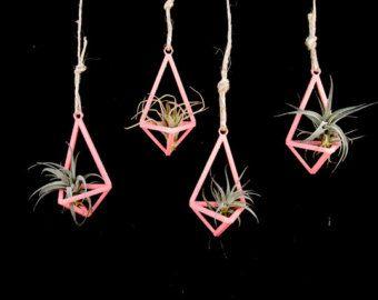 4 Pack - Prism Piece No.1 - 3D Printed Air Plant (tillandsia) Hanging Planter