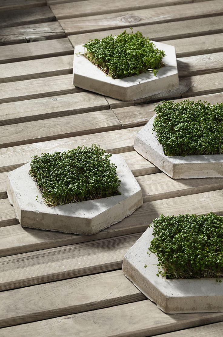 Concrete stepping stones www.pandurohobby.com Outdoor living by Panduro #decoration #DIY  #urban #farming