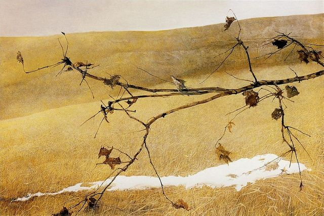 'Long Limb' (1999) by Andrew Wyeth    Tempera    Andrew Wyeth [American realist painter, 1917- 2009]. Taught by his father artist and illustrator N.C. Wyeth. Andrew's son, Jamie Wyeth, is part of the third generation of Wyeth artists.    Brandywine Valley around Chadds Ford Pennsylvania    Official website for Andrew Wyeth: www.andrewwyeth.com: