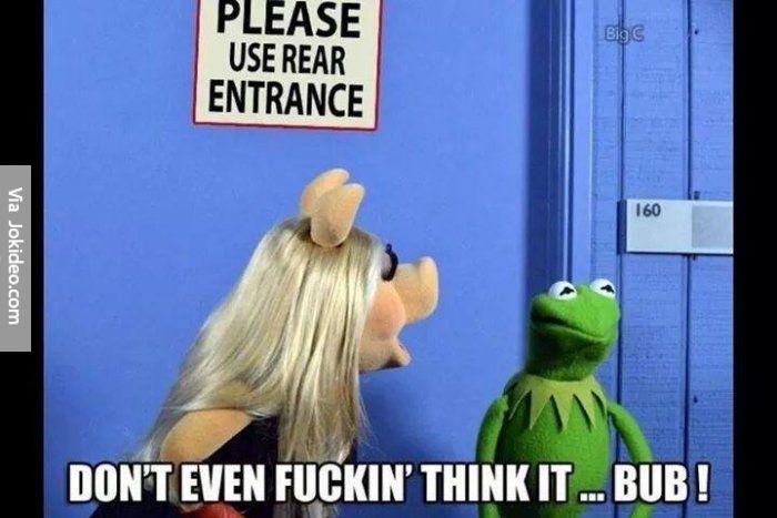Funny muppets meme - http://www.jokideo.com/