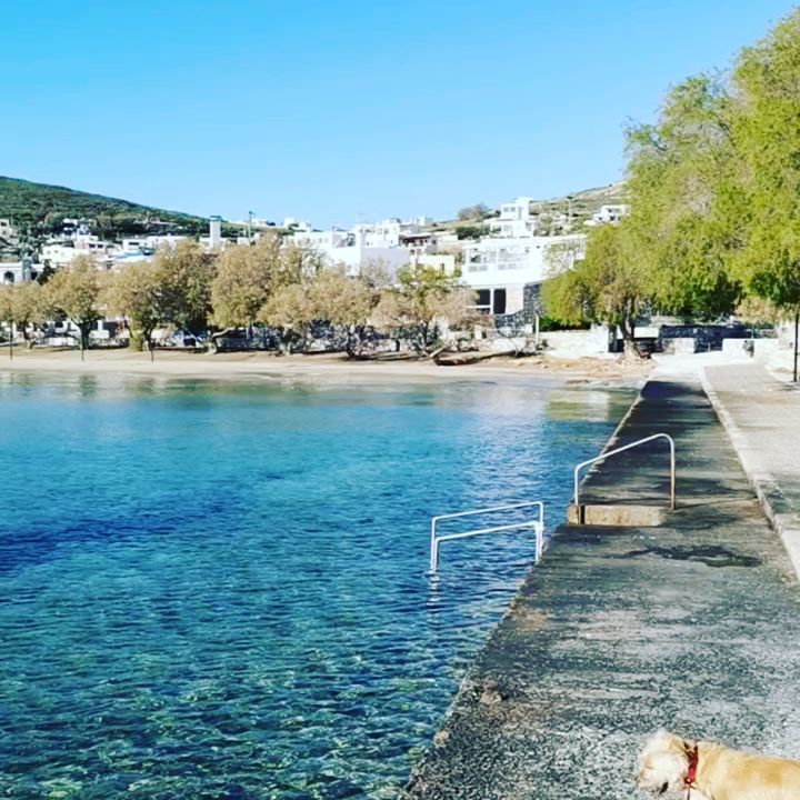 #Syros #astraeusholidays #summer2019 #travel #Greece