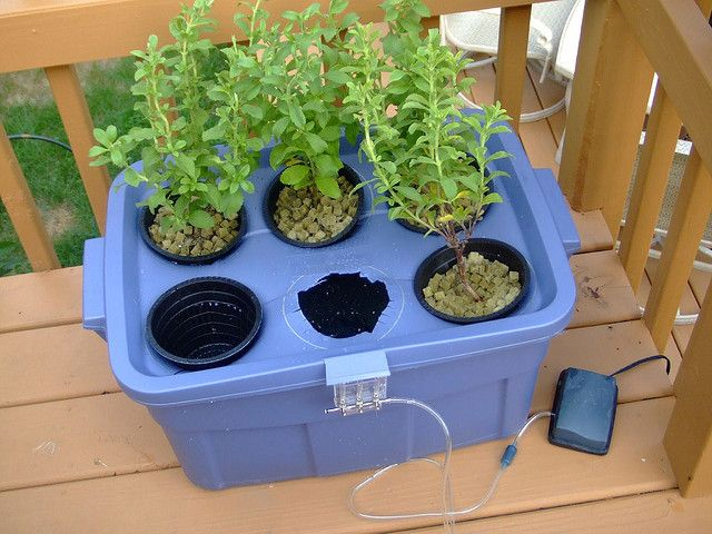 This is a guide to making a homemade hydroponic system.