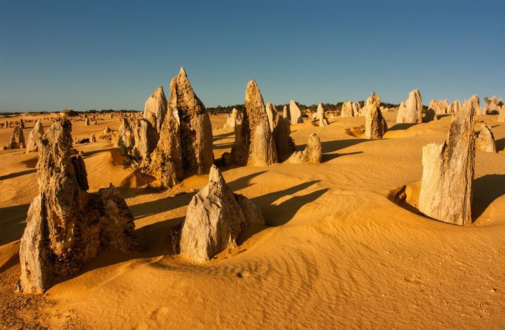 The Pinnacles desert at Namboung National Park. Western Australia