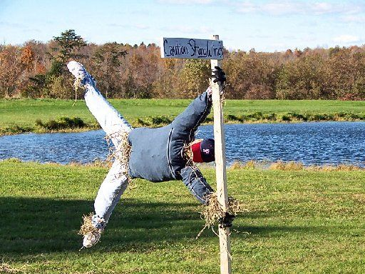scarecrow contest photos - Google Search