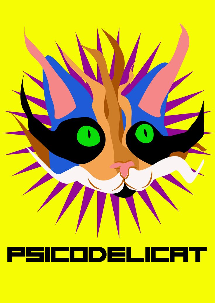 Gato psicodelico