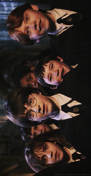 From down to up: Hermione Granger, Neville Longbottom, Harry Potter, Dean Thomas, Seamus Finnigan, Ronald Weasley