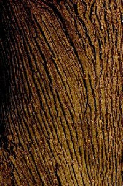 boomschors, ruw en ribbelig van terxtuur