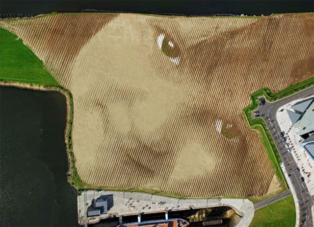 Monumental 11 Acre Portrait in Belfast