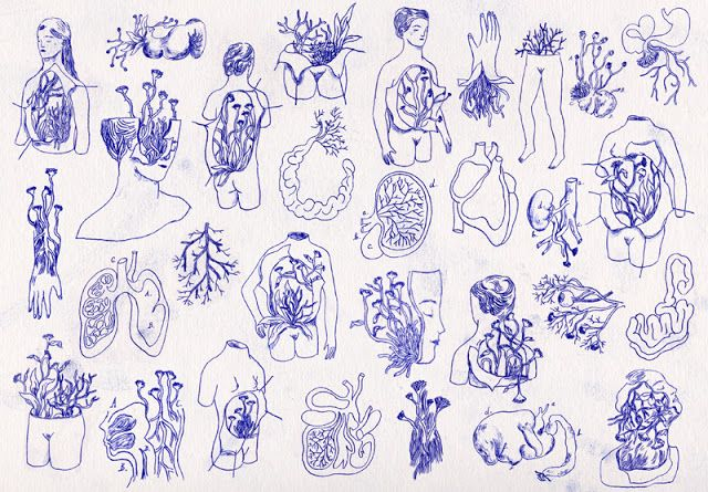 S O P H I E ° L É C U Y E R : illustration // Fragiles ou contagieuses