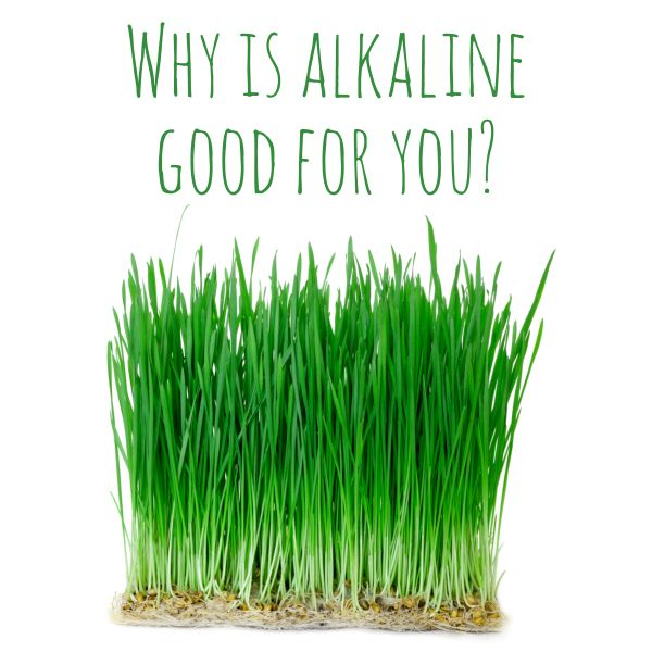 WHY IS ALKALINE GOOD FOR YOU? Find out how an alkaline diet could support your health, in our latest blog post...