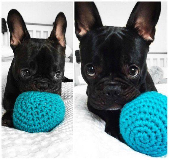 Unpoppable Balls From Amandalynncrochet On Etsy Sponsored Dogs