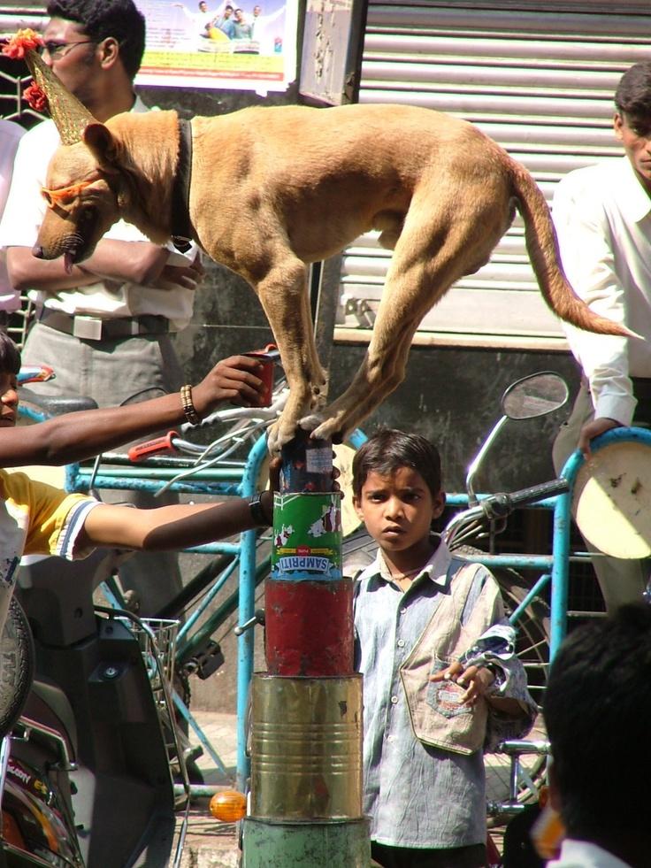 Blew my mind, Pune, India