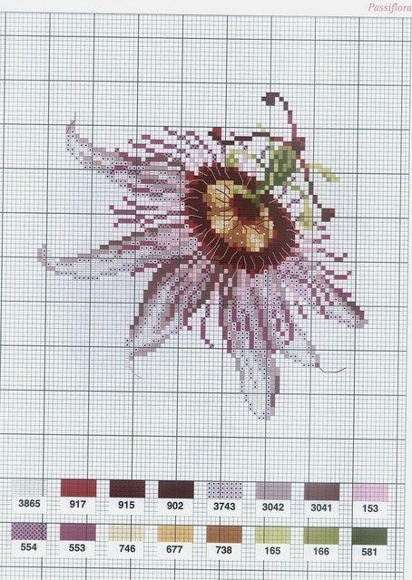 [flor-ponto-cruz-grafico-31%255B2%255D.jpg]